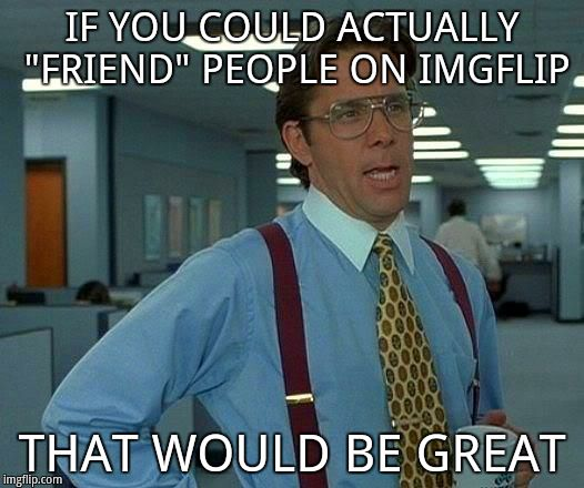 "IF YOU COULD ACTUALLY ""FRIEND"" PEOPLE ON IMGFLIP THAT WOULD BE GREAT 