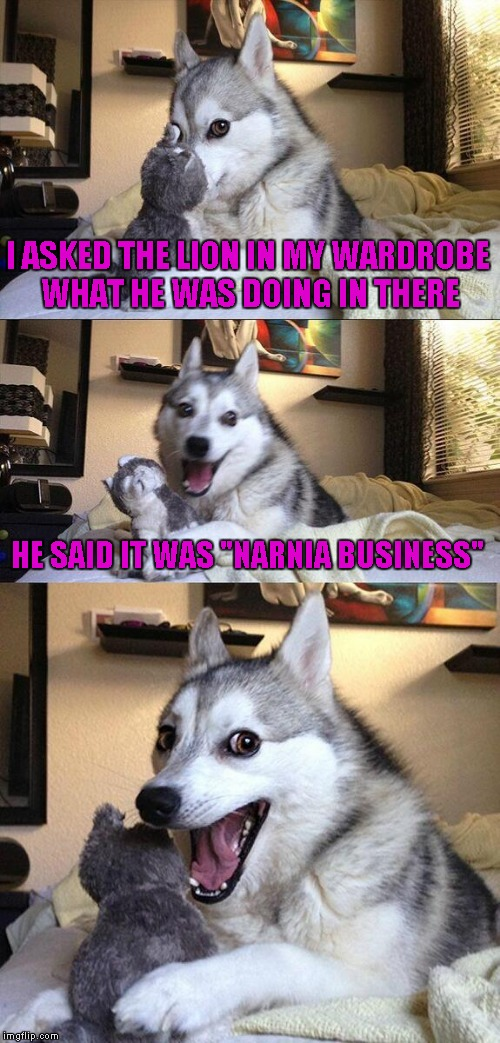 "Bad Pun Dog Meme | I ASKED THE LION IN MY WARDROBE WHAT HE WAS DOING IN THERE HE SAID IT WAS ""NARNIA BUSINESS"" 