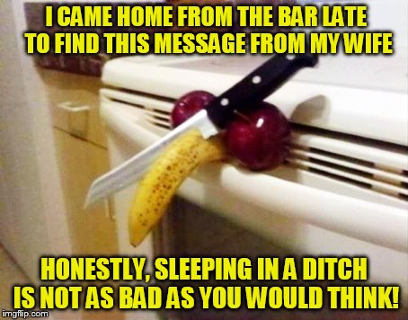 Learning how to rough it. For all the right reasons! | I CAME HOME FROM THE BAR LATE TO FIND THIS MESSAGE FROM MY WIFE HONESTLY, SLEEPING IN A DITCH IS NOT AS BAD AS YOU WOULD THINK! | image tagged in wife,cut,balls,funny meme,joke,bar | made w/ Imgflip meme maker