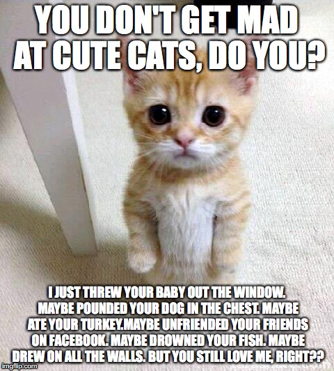 Cute Cat Meme |  YOU DON'T GET MAD AT CUTE CATS, DO YOU? I JUST THREW YOUR BABY OUT THE WINDOW. MAYBE POUNDED YOUR DOG IN THE CHEST. MAYBE ATE YOUR TURKEY.MAYBE UNFRIENDED YOUR FRIENDS ON FACEBOOK. MAYBE DROWNED YOUR FISH. MAYBE DREW ON ALL THE WALLS. BUT YOU STILL LOVE ME, RIGHT?? | image tagged in memes,cute cat | made w/ Imgflip meme maker