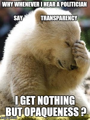 Facepalm Bear |  WHY WHENEVER I HEAR A POLITICIAN                      SAY                 TRANSPARENCY; I GET NOTHING BUT OPAQUENESS ? | image tagged in memes,facepalm bear | made w/ Imgflip meme maker