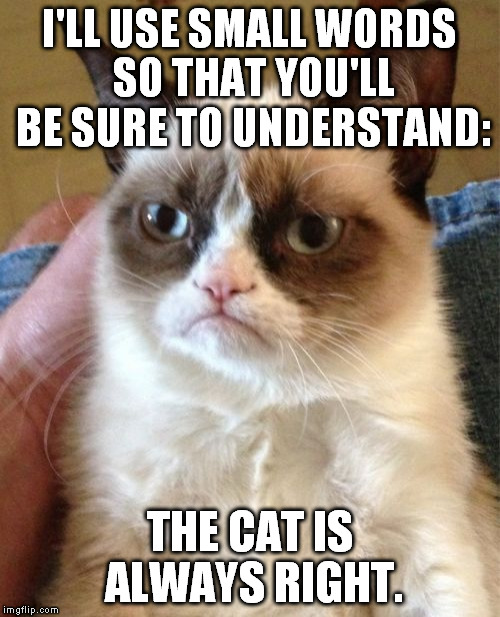Always. No question. |  I'LL USE SMALL WORDS SO THAT YOU'LL BE SURE TO UNDERSTAND:; THE CAT IS ALWAYS RIGHT. | image tagged in memes,grumpy cat,always right,funny,small words | made w/ Imgflip meme maker