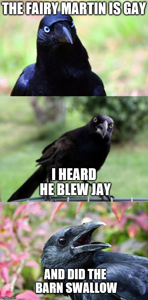 14auyv the birds and the birds imgflip,Funny Barn Memes