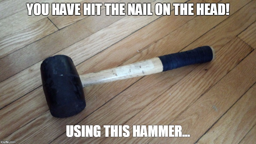 rubberhammer | YOU HAVE HIT THE NAIL ON THE HEAD! USING THIS HAMMER... | image tagged in rubberhammer | made w/ Imgflip meme maker