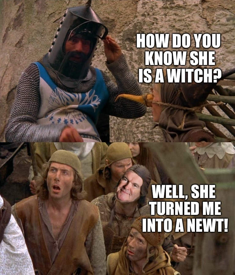 This time he's not going to get better... | HOW DO YOU KNOW SHE IS A WITCH? WELL, SHE TURNED ME INTO A NEWT! | image tagged in monty python,newt,gingrich,funny,donald trump | made w/ Imgflip meme maker