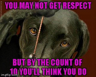YOU MAY NOT GET RESPECT BUT BY THE COUNT OF 10 YOU'LL THINK YOU DO | made w/ Imgflip meme maker
