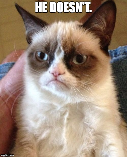 Grumpy Cat Meme | HE DOESN'T. | image tagged in memes,grumpy cat | made w/ Imgflip meme maker