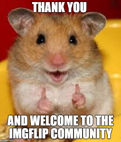 Thumbs up hamster  | THANK YOU AND WELCOME TO THE IMGFLIP COMMUNITY | image tagged in thumbs up hamster | made w/ Imgflip meme maker