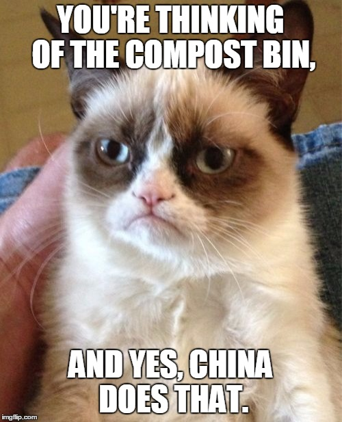 Grumpy Cat Meme | YOU'RE THINKING OF THE COMPOST BIN, AND YES, CHINA DOES THAT. | image tagged in memes,grumpy cat | made w/ Imgflip meme maker