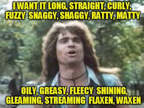 I WANT IT LONG, STRAIGHT, CURLY, FUZZY  SNAGGY, SHAGGY, RATTY, MATTY OILY, GREASY, FLEECY  SHINING, GLEAMING, STREAMING  FLAXEN, WAXEN | made w/ Imgflip meme maker