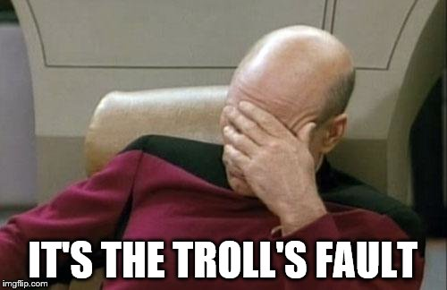 Captain Picard Facepalm Meme | IT'S THE TROLL'S FAULT | image tagged in memes,captain picard facepalm | made w/ Imgflip meme maker