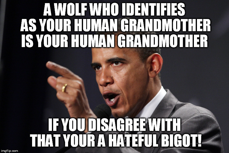 A WOLF WHO IDENTIFIES AS YOUR HUMAN GRANDMOTHER IS YOUR HUMAN GRANDMOTHER IF YOU DISAGREE WITH THAT YOUR A HATEFUL BIGOT! | made w/ Imgflip meme maker