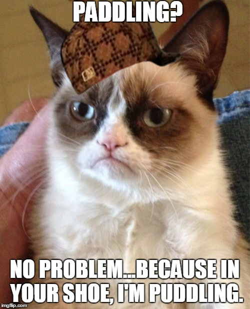 Grumpy Cat Meme | PADDLING? NO PROBLEM...BECAUSE IN YOUR SHOE, I'M PUDDLING. | image tagged in memes,grumpy cat,scumbag | made w/ Imgflip meme maker