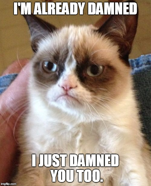 Grumpy Cat Meme | I'M ALREADY DAMNED I JUST DAMNED YOU TOO. | image tagged in memes,grumpy cat | made w/ Imgflip meme maker
