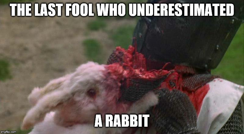 THE LAST FOOL WHO UNDERESTIMATED A RABBIT | made w/ Imgflip meme maker
