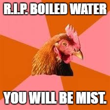 Anti-Joke Chicken | R.I.P. BOILED WATER YOU WILL BE MIST. | image tagged in anti-joke chicken | made w/ Imgflip meme maker