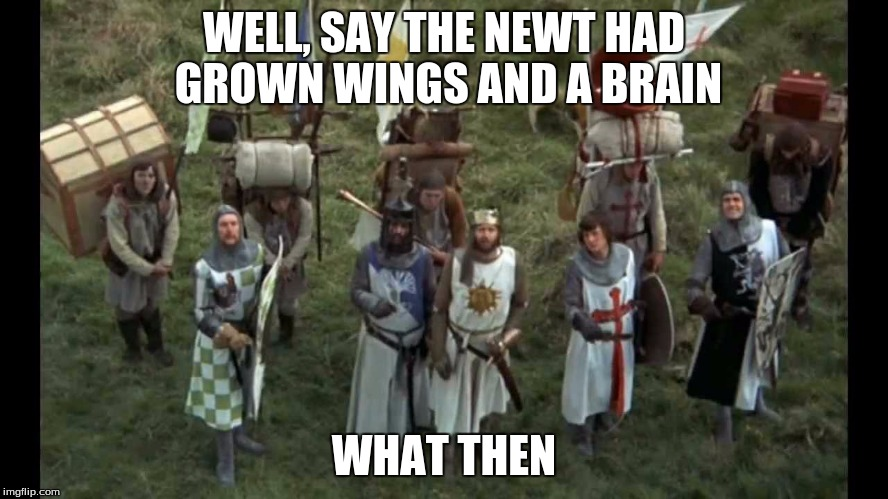 monty python | WELL, SAY THE NEWT HAD GROWN WINGS AND A BRAIN WHAT THEN | image tagged in monty python | made w/ Imgflip meme maker
