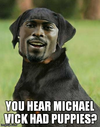YOU HEAR MICHAEL VICK HAD PUPPIES? | made w/ Imgflip meme maker