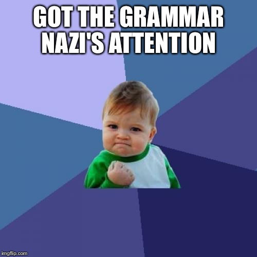 GOT THE GRAMMAR NAZI'S ATTENTION | image tagged in memes,success kid | made w/ Imgflip meme maker