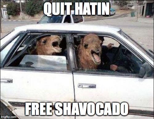 Quit Hatin Meme | QUIT HATIN FREE SHAVOCADO | image tagged in memes,quit hatin | made w/ Imgflip meme maker