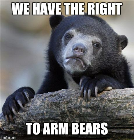 Confession Bear Meme | WE HAVE THE RIGHT TO ARM BEARS | image tagged in memes,confession bear | made w/ Imgflip meme maker