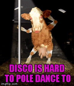 DISCO IS HARD TO POLE DANCE TO | made w/ Imgflip meme maker
