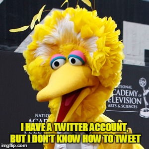 Big Bird | I HAVE A TWITTER ACCOUNT, BUT I DON'T KNOW HOW TO TWEET | image tagged in memes,big bird | made w/ Imgflip meme maker