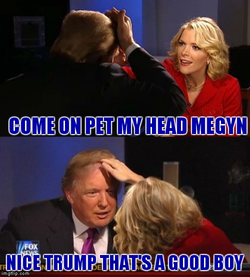How in the world did this happen haha! |  COME ON PET MY HEAD MEGYN; NICE TRUMP THAT'S A GOOD BOY | image tagged in donald trumph hair,megyn kelly essentially | made w/ Imgflip meme maker