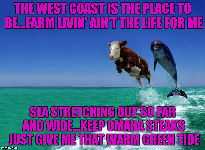 I was watching Green Acres this morning so here you go...LOL | THE WEST COAST IS THE PLACE TO BE...FARM LIVIN' AIN'T THE LIFE FOR ME SEA STRETCHING OUT SO FAR AND WIDE...KEEP OMAHA STEAKS JUST GIVE ME TH | image tagged in cow in the ocean,memes,sea cow,funny animals,animals,funny | made w/ Imgflip meme maker