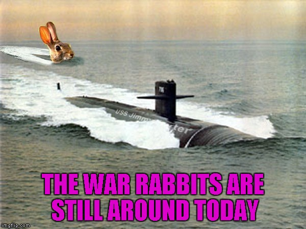 THE WAR RABBITS ARE STILL AROUND TODAY | made w/ Imgflip meme maker