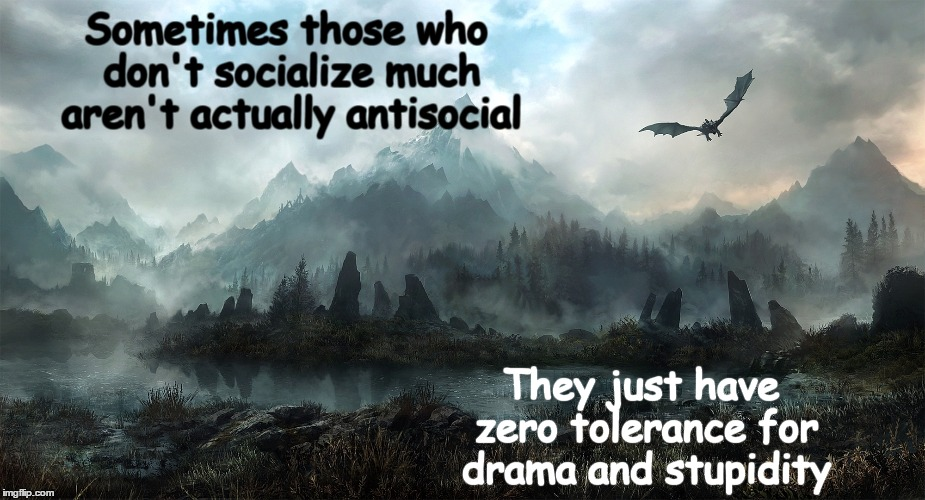 Sometimes those who don't socialize much aren't actually antisocial They just have zero tolerance for drama and stupidity | image tagged in stupidity,dragon,stupid people | made w/ Imgflip meme maker