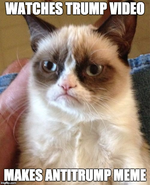 Grumpy Cat Meme | WATCHES TRUMP VIDEO MAKES ANTITRUMP MEME | image tagged in memes,grumpy cat | made w/ Imgflip meme maker