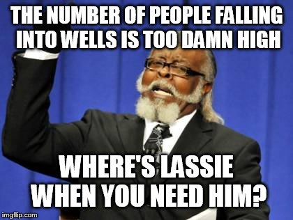 Too Damn High Meme | THE NUMBER OF PEOPLE FALLING INTO WELLS IS TOO DAMN HIGH WHERE'S LASSIE WHEN YOU NEED HIM? | image tagged in memes,too damn high | made w/ Imgflip meme maker
