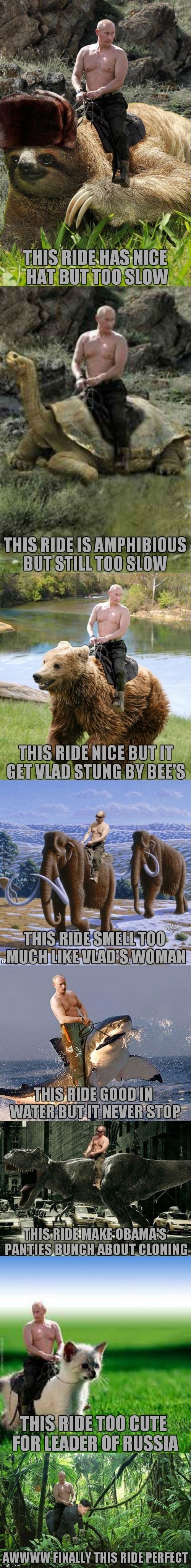 The history of Vlad finding a ride... | THIS RIDE HAS NICE HAT BUT TOO SLOW AWWWW FINALLY THIS RIDE PERFECT THIS RIDE IS AMPHIBIOUS BUT STILL TOO SLOW THIS RIDE TOO CUTE FOR LEADER | image tagged in vlad's rides | made w/ Imgflip meme maker