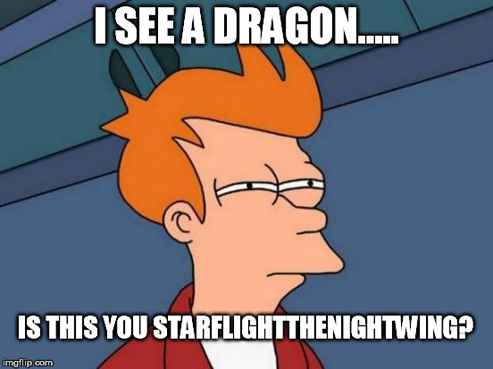 Futurama Fry Meme | I SEE A DRAGON..... IS THIS YOU STARFLIGHTTHENIGHTWING? | image tagged in memes,futurama fry | made w/ Imgflip meme maker
