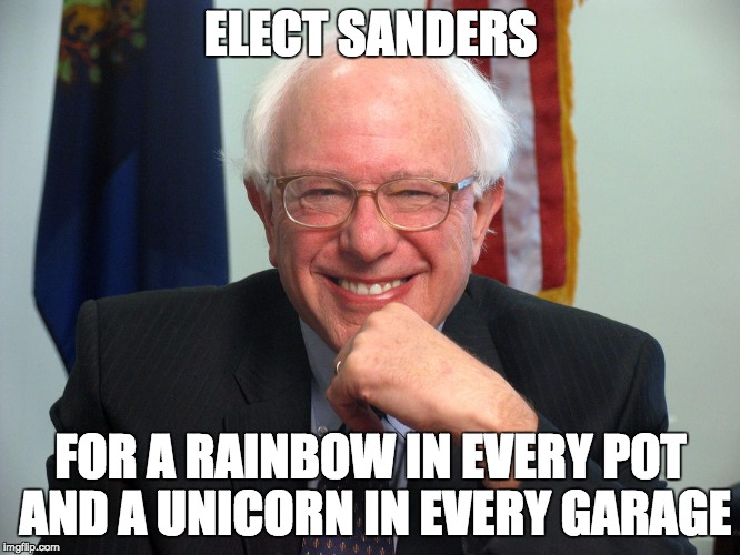 Vote Bernie Sanders |  ELECT SANDERS; FOR A RAINBOW IN EVERY POT AND A UNICORN IN EVERY GARAGE | image tagged in vote bernie sanders | made w/ Imgflip meme maker
