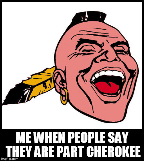pretendians | ME WHEN PEOPLE SAY THEY ARE PART CHEROKEE | image tagged in cherokee,pretend,wannabe,fake people,indians | made w/ Imgflip meme maker