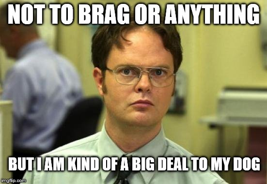 I am kind of a big deal | NOT TO BRAG OR ANYTHING BUT I AM KIND OF A BIG DEAL TO MY DOG | image tagged in memes,dwight schrute | made w/ Imgflip meme maker