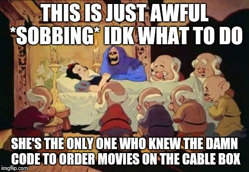 Parental lock | THIS IS JUST AWFUL *SOBBING* IDK WHAT TO DO SHE'S THE ONLY ONE WHO KNEW THE DAMN CODE TO ORDER MOVIES ON THE CABLE BOX | image tagged in snow white,skeletor,funny,memes | made w/ Imgflip meme maker