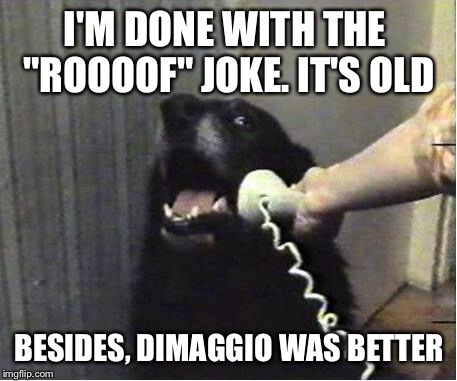 "H/t to Looney Tunes | I'M DONE WITH THE  ""ROOOOF"" JOKE. IT'S OLD BESIDES, DIMAGGIO WAS BETTER 