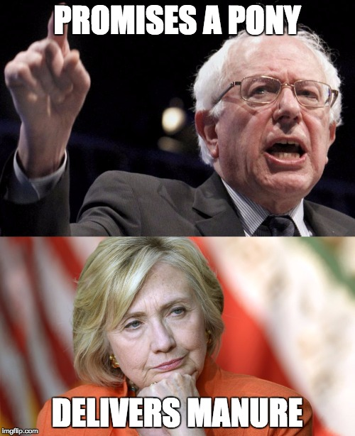 Bernie vs. Hillary ... | PROMISES A PONY DELIVERS MANURE | image tagged in politics,clinton,bernie sanders | made w/ Imgflip meme maker