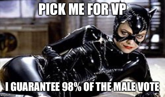 PICK ME FOR VP I GUARANTEE 98% OF THE MALE VOTE | made w/ Imgflip meme maker