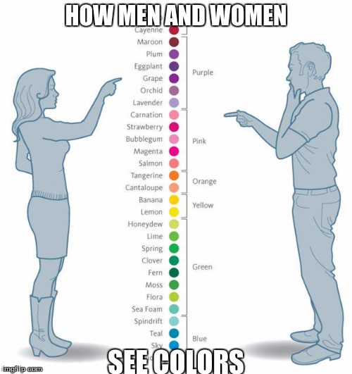 You're lying if you don't agree... | HOW MEN AND WOMEN SEE COLORS | image tagged in colors,women,men,funny,memes | made w/ Imgflip meme maker