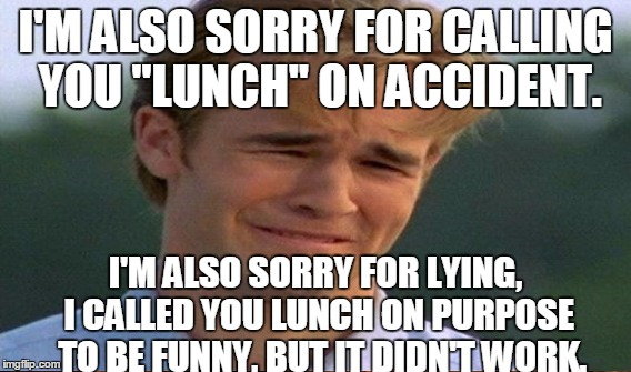 "I'M ALSO SORRY FOR CALLING YOU ""LUNCH"" ON ACCIDENT. I'M ALSO SORRY FOR LYING, I CALLED YOU LUNCH ON PURPOSE  TO BE FUNNY, BUT IT DIDN'T WORK 