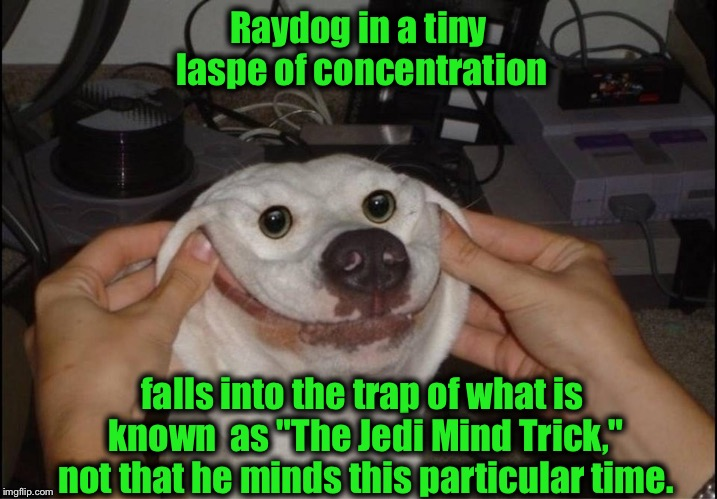 "Raydog in a tiny laspe of concentration falls into the trap of what is known  as ""The Jedi Mind Trick,"" not that he minds this particular ti 