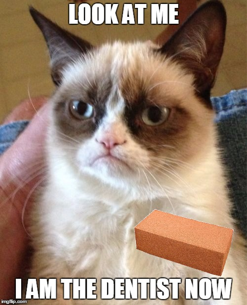 Grumpy Cat has a way to fix your smile |  LOOK AT ME; I AM THE DENTIST NOW | image tagged in memes,grumpy cat,maim,weapons,brick,insult | made w/ Imgflip meme maker