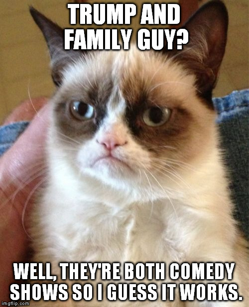Grumpy Cat Meme | TRUMP AND FAMILY GUY? WELL, THEY'RE BOTH COMEDY SHOWS SO I GUESS IT WORKS. | image tagged in memes,grumpy cat | made w/ Imgflip meme maker