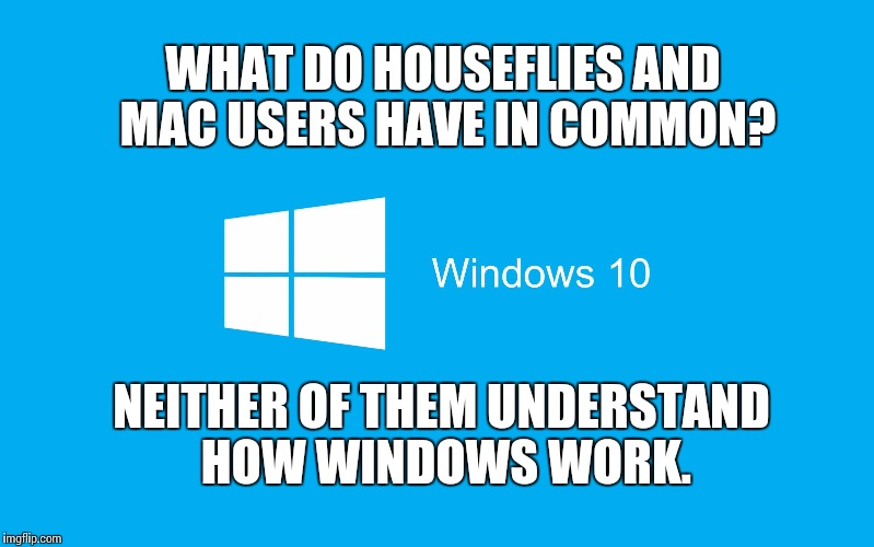 What do houseflies and Mac users have in common? | WHAT DO HOUSEFLIES AND MAC USERS HAVE IN COMMON? NEITHER OF THEM UNDERSTAND HOW WINDOWS WORK. | image tagged in windows 10,memes,mac,apple | made w/ Imgflip meme maker