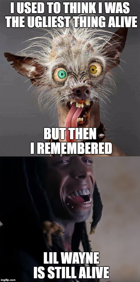 maybe i am not that ugly after all... |  I USED TO THINK I WAS THE UGLIEST THING ALIVE; BUT THEN I REMEMBERED; LIL WAYNE IS STILL ALIVE | image tagged in lil wayne,ugly,memes,remember,fugly | made w/ Imgflip meme maker