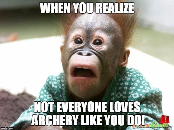 WHEN YOU REALIZE NOT EVERYONE LOVES ARCHERY LIKE YOU DO! | image tagged in archery | made w/ Imgflip meme maker
